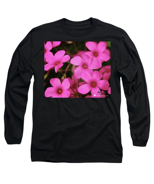 Pretty Pink Phlox Long Sleeve T-Shirt