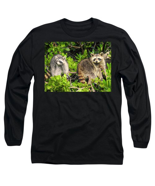 Raccoons In The Mangroves Long Sleeve T-Shirt