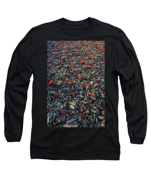 Red Flowers Over Stones Long Sleeve T-Shirt