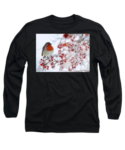 Robin And Berries Long Sleeve T-Shirt