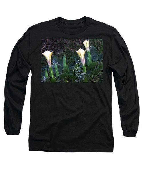 Long Sleeve T-Shirt featuring the photograph Sacred Datura Trio - Partial Blooms by Judy Kennedy