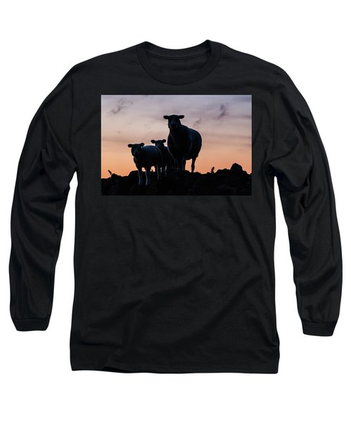 Long Sleeve T-Shirt featuring the photograph Sheep Family by Anjo Ten Kate