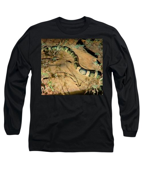 Long Sleeve T-Shirt featuring the photograph Sonoran Desert Longnosed Snake Vintage by Judy Kennedy
