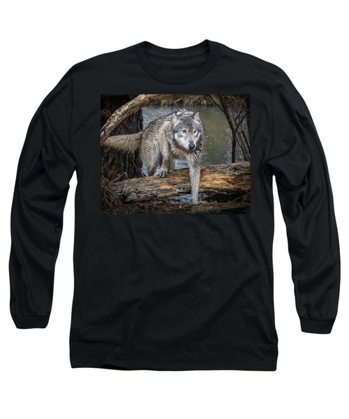 Stepping Over Long Sleeve T-Shirt