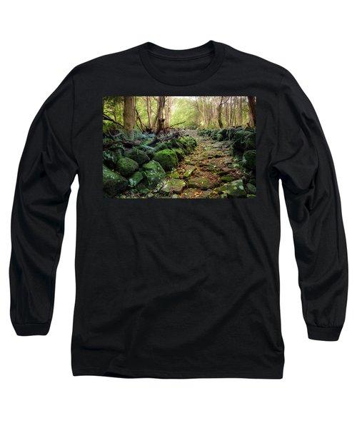 Waterfall Path Long Sleeve T-Shirt