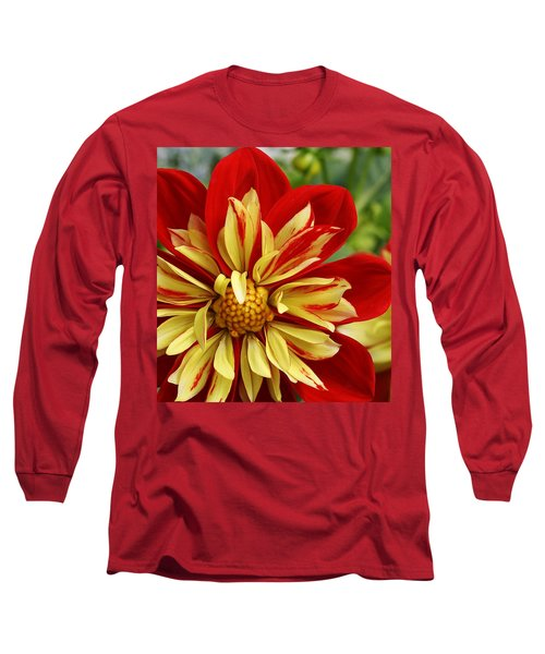 Fireworks Long Sleeve T-Shirt by Bruce Bley