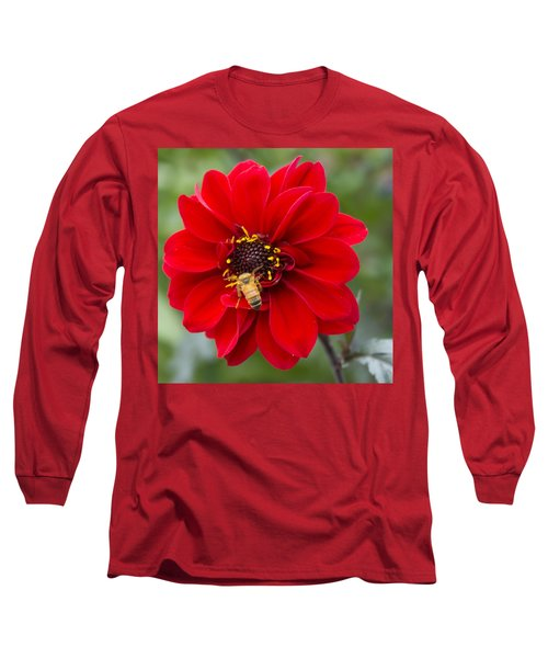 Park Beauty Long Sleeve T-Shirt