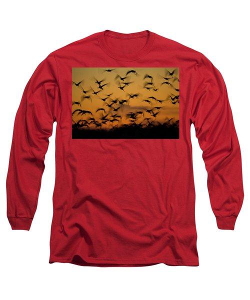 Sandhill Migration Long Sleeve T-Shirt