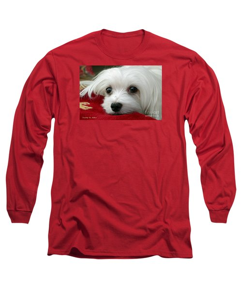 Snowdrop The Maltese Long Sleeve T-Shirt by Morag Bates