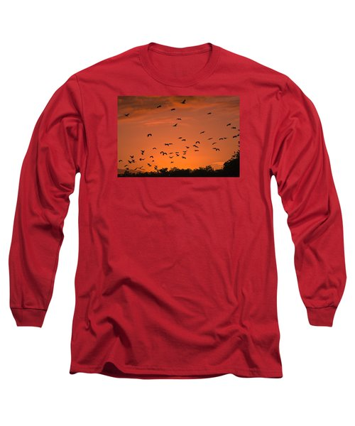 Birds At Sunset Long Sleeve T-Shirt by Sally Weigand