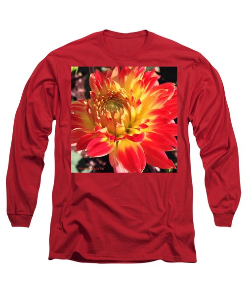A Burst Of Fall Color Long Sleeve T-Shirt