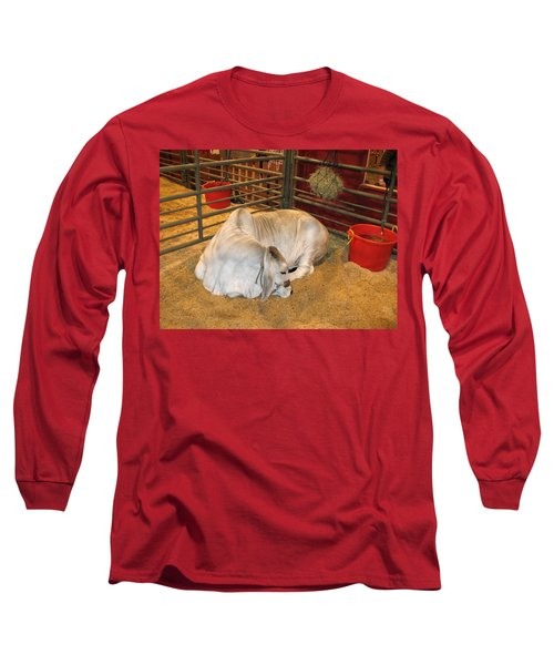 American Brahman Heifer Long Sleeve T-Shirt by Connie Fox
