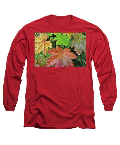 Autumn Devil's Club Long Sleeve T-Shirt by Cathy Mahnke