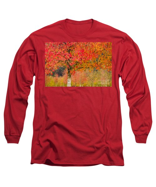 Autumn Fire Long Sleeve T-Shirt by Sonya Lang