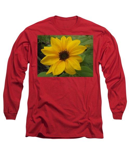 Baby Sunflower Long Sleeve T-Shirt