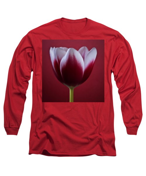 Abstract Red White Flowers Tulips Macro  Photography Art Long Sleeve T-Shirt by Artecco Fine Art Photography