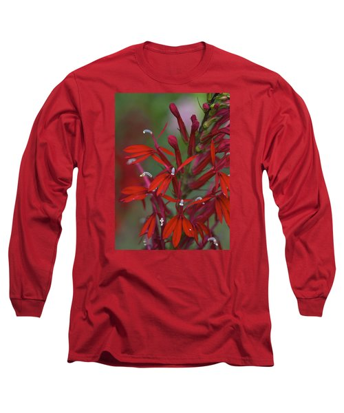 Long Sleeve T-Shirt featuring the photograph Cardinal Flower by Jane Eleanor Nicholas