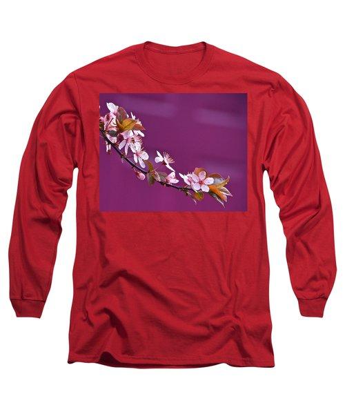 Cherry Blossoms And Plum Door Long Sleeve T-Shirt