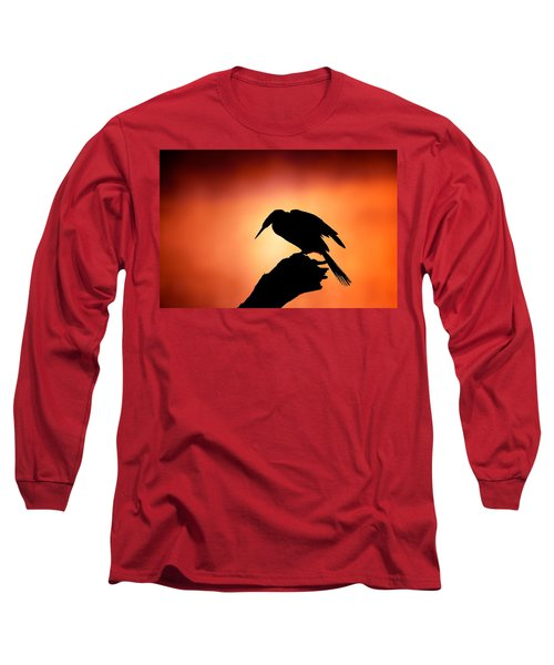 Darter Silhouette With Misty Sunrise Long Sleeve T-Shirt