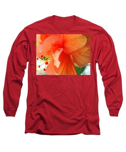 Double Peach Long Sleeve T-Shirt