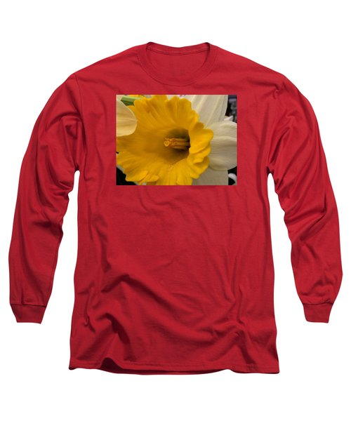 Easter 2014-3 Long Sleeve T-Shirt by Jeff Iverson