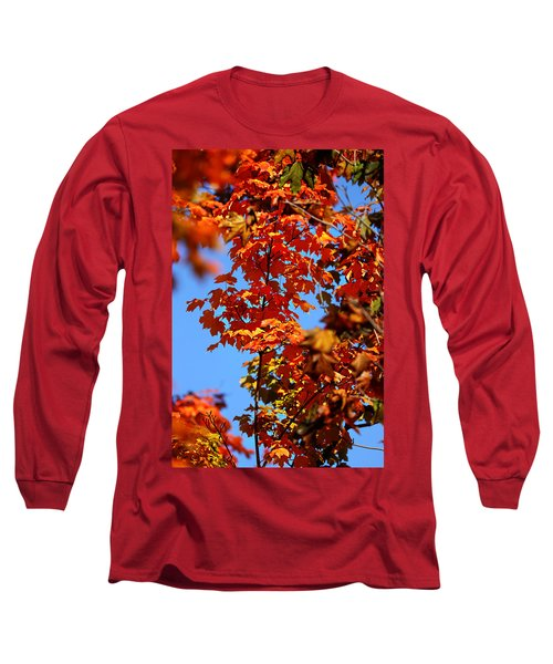 Fall Foliage Colors 15 Long Sleeve T-Shirt