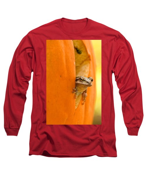 Halloween Surprise  Long Sleeve T-Shirt by Jean Noren