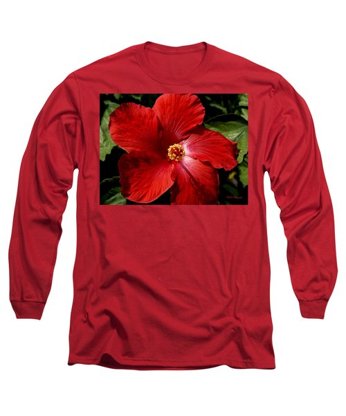 Hibiscus Landscape Long Sleeve T-Shirt