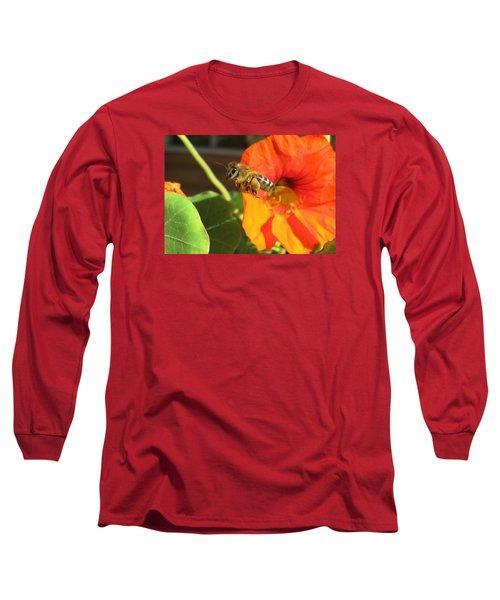 Honeybee Leaving Nasturtium With A Full Pollen Basket Long Sleeve T-Shirt