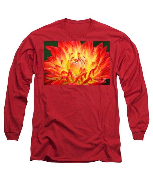 Img 0023 Flor En Rojo Detalle Long Sleeve T-Shirt