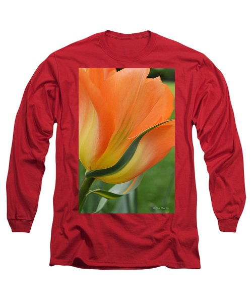 Imperfect Beauty Long Sleeve T-Shirt by Felicia Tica