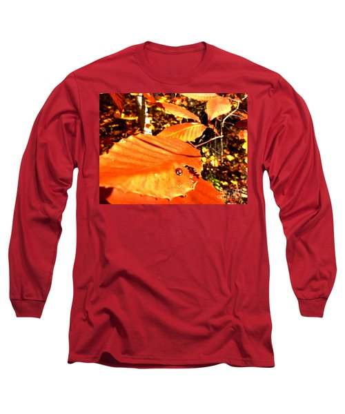 Ladybug At Fall Long Sleeve T-Shirt