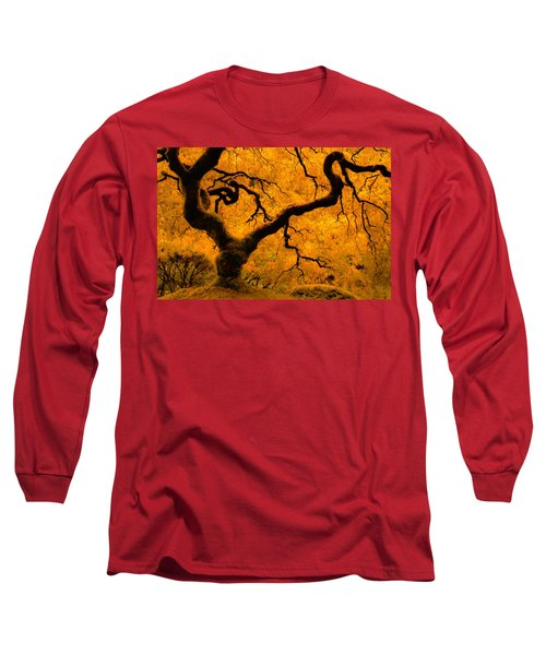 Limned In Light Long Sleeve T-Shirt