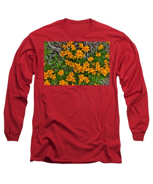 Long Sleeve T-Shirt featuring the photograph Little Sunflower In The Mountains by Janice Rae Pariza