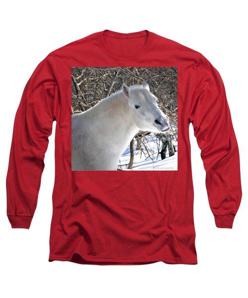 Love Is...paso Fino Stallion Smiles  Long Sleeve T-Shirt
