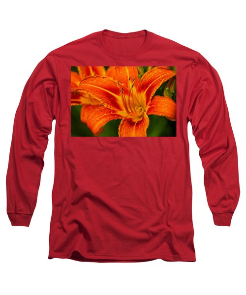 Morning Dew Long Sleeve T-Shirt by Dave Files