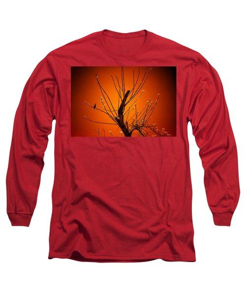 Morning Dove Sunrise Long Sleeve T-Shirt