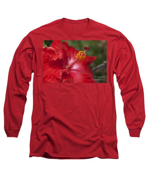 Morning Whispers Long Sleeve T-Shirt by Sharon Mau