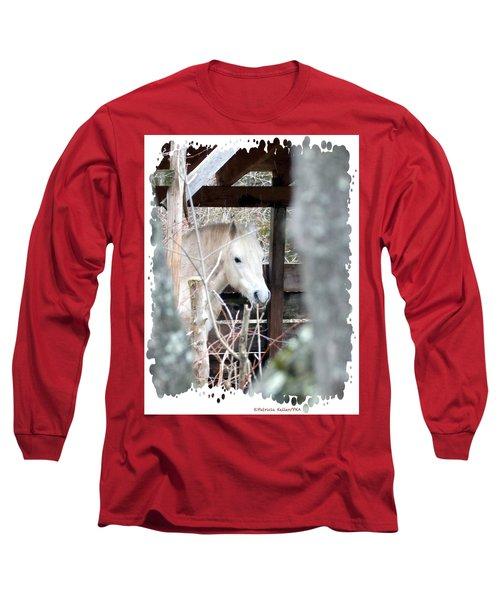 Paso Fino Stallion Close-up Long Sleeve T-Shirt