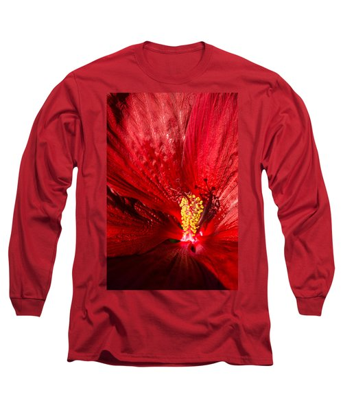 Passionate Ruby Red Silk Long Sleeve T-Shirt