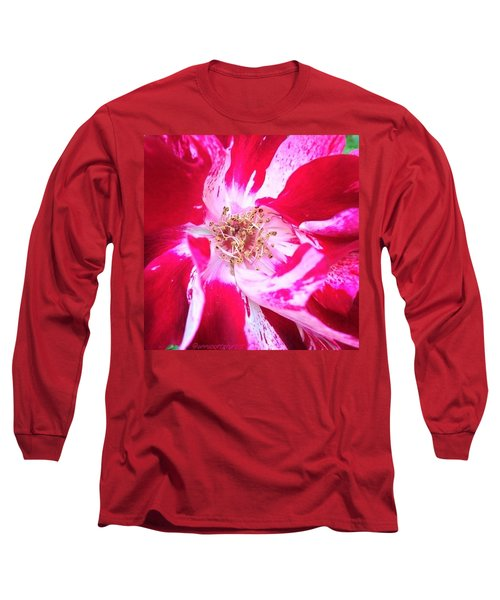 Peppermint Swirls Long Sleeve T-Shirt
