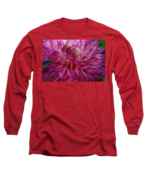 Long Sleeve T-Shirt featuring the photograph Pink And White Dahlia  by Denyse Duhaime