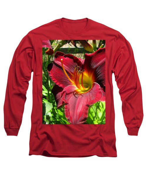 Long Sleeve T-Shirt featuring the photograph Pretty As A Picture by Brooks Garten Hauschild