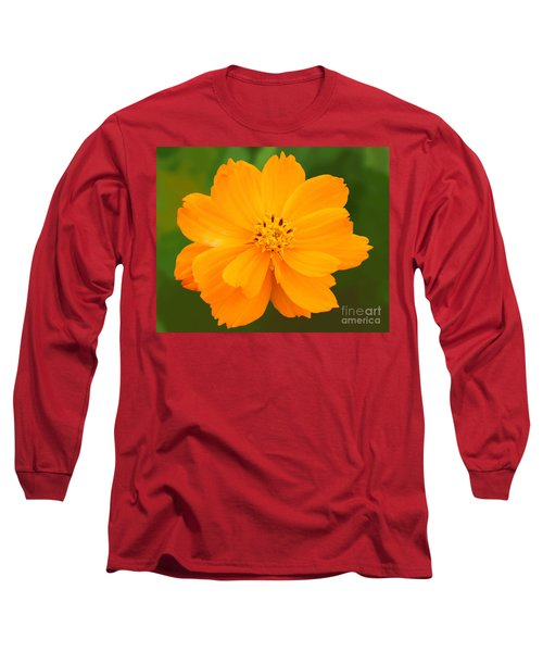 Long Sleeve T-Shirt featuring the photograph Pretty In Orange by Mariarosa Rockefeller