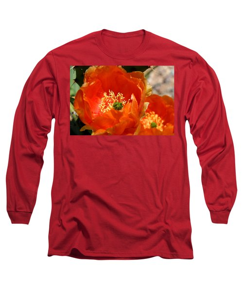 Prickly Pear In Bloom Long Sleeve T-Shirt by Joe Kozlowski
