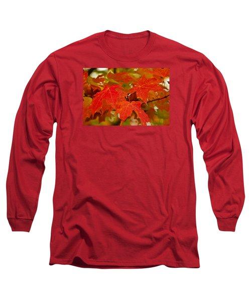 Ravishing Fall Long Sleeve T-Shirt