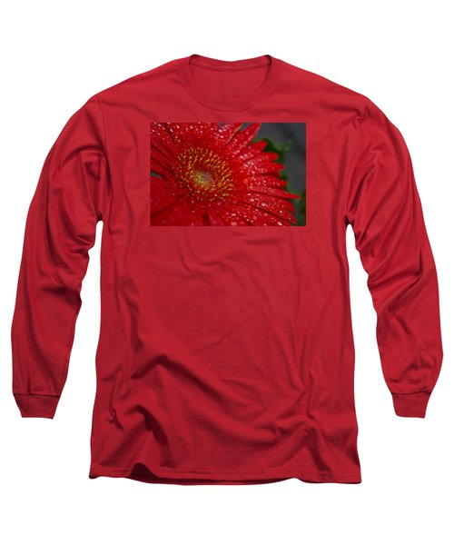 Red Gerber In The Rain Long Sleeve T-Shirt by Shelly Gunderson