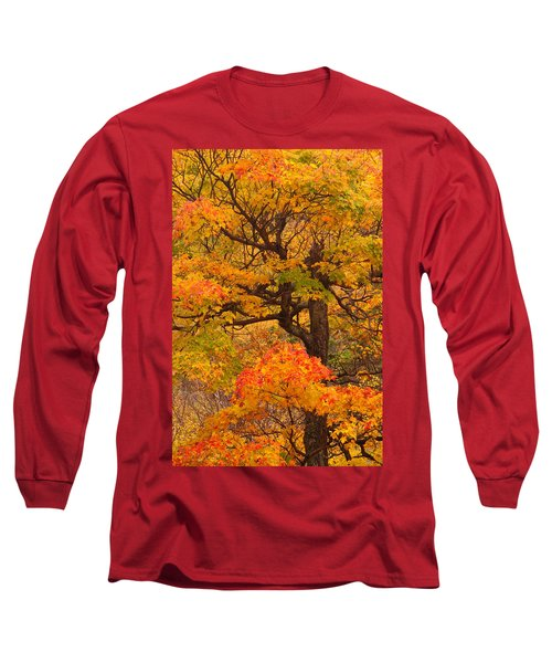 Shapely Maple Tree Long Sleeve T-Shirt