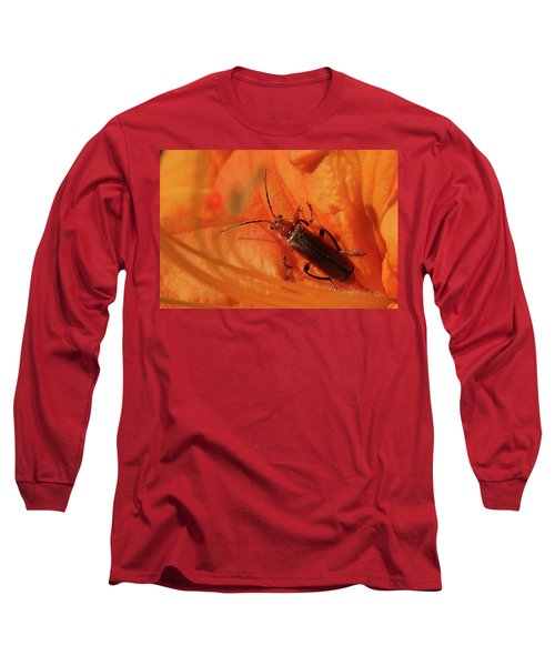 Soldier Beetle Long Sleeve T-Shirt