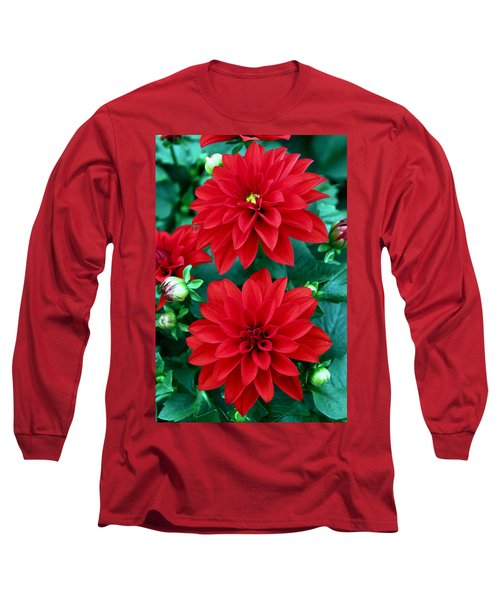 Spring Flowers 5 Long Sleeve T-Shirt